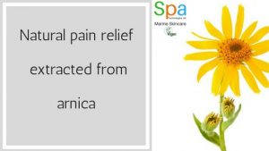 natural pain relief extracted from arnica